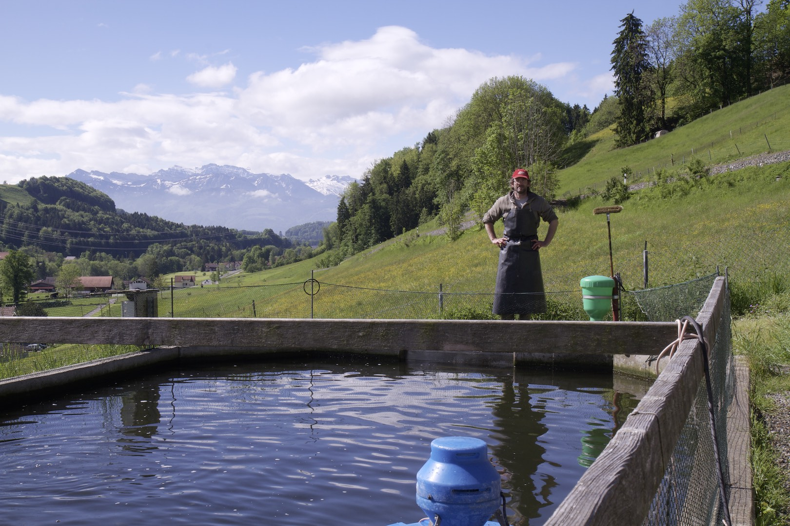 The man and his fish: Bachtellachs entrepreneur Yves C. Sacher in Zürich Oberland